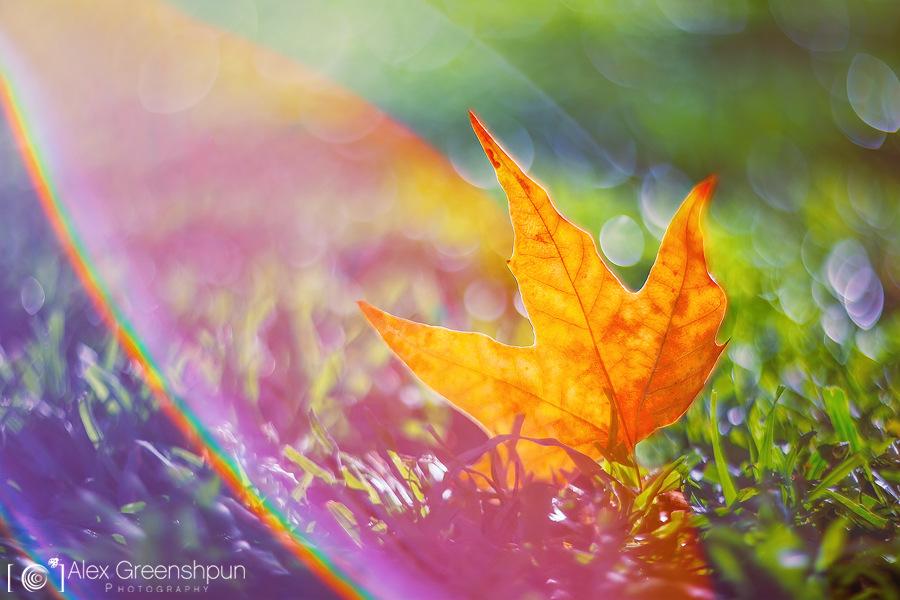 Októberi energiák – Az idő megtréfál.